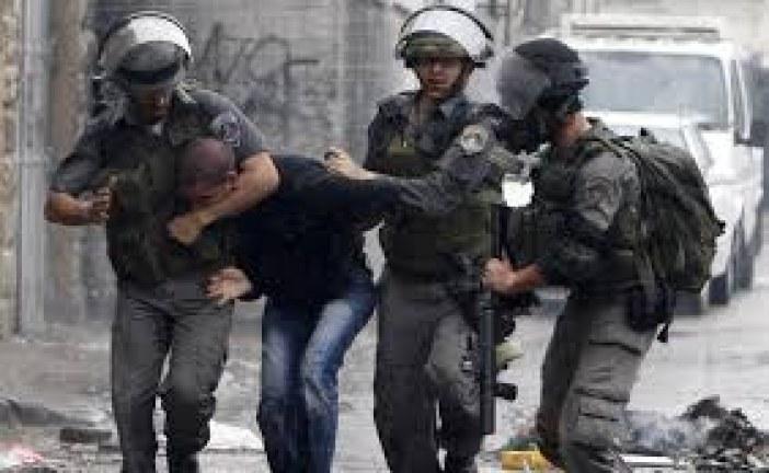 قوات الاحتلال تعتقل 7 شبان فلسطينيين وتتوغل شمال قطاع غزة