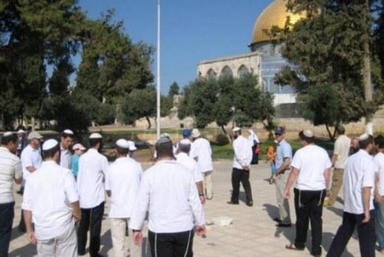 اقتحام للمسجد الأقصى وتوغل في حدود قطاع غزة