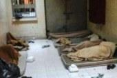 """البحرين: 28 معتقلاً في سجن """"جَوْ"""" مصابين بـ""""الإيدز"""" بسبب إجراءات السلطات الانتقامية (صورة)"""