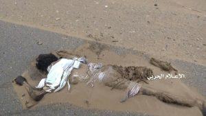 588 قتيل من مرتزقة العدوان في الساحل الغربي الاسماء