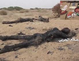 تحقيق ميداني يكشف مصرع 850 ضابط وجندي سوداني في اليمن