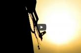 فيديو «للهِ عاقبةُ الأمور» مصطفى المحضار